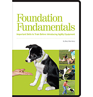 Foundation Fundamentals 6-DVD Set