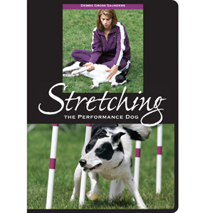 StretchingPerformanceDogDVD_Big
