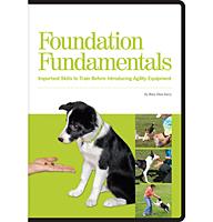 FoundationFundamentalsDVD_Sm