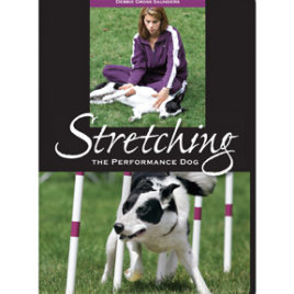 Stretching the Performance Dog